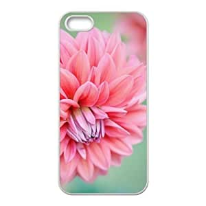 glam red flowers personalized high quality cell phone Iphone 6 4.7Inch
