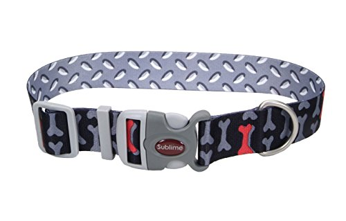 "Sublime Coastal Pet Products Bones/Metal Plate Adjustable Dog Collar, 1"" x 12""-18"""