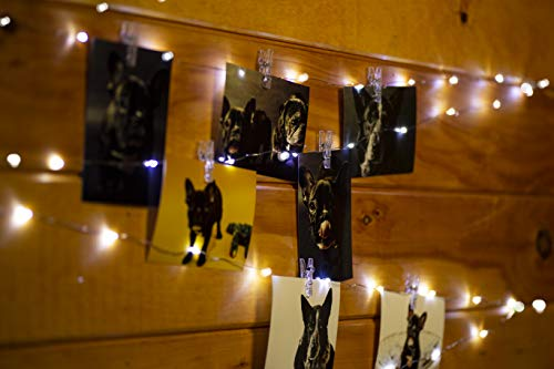 McGee Worldwide 16.4 Ft Photo Clip String Lights 2-in-1-40 Clear Removable Photograph Clips and Decorative Copper Wire with Bright White LED Bulbs - for Artwork, Pictures, Cards ()