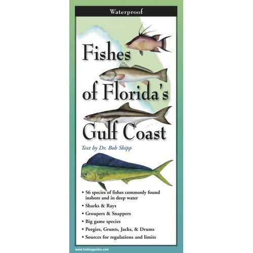 Fish-Id Guide Florida's Gulf Coast