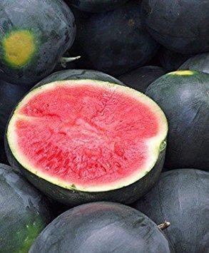 50 Black Diamond Watermelon Seeds