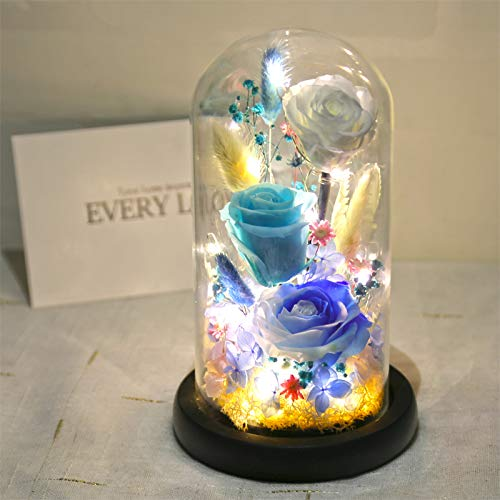 JYJSYMMG 永遠の生活 ガラスカバー プリザーブドフラワー 11.520cm バラ ライトナイトライト ウェディング 記念日 バレンタインデー 母の友人 ギフトに最適 9648257176645 B07H5K8XRQ  01 Blue
