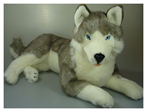 Bocchetta Plush Toys Husky Stuffed Animal Plush Toy Extra La