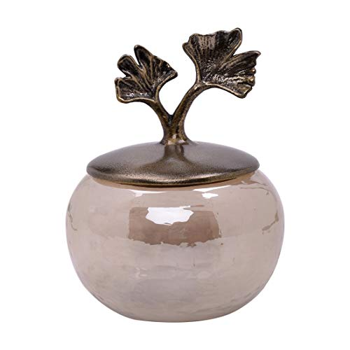 Decozen The Gingko Collection Glass Cotton Jar in Brown Luster Finish Antique Brass Finished Aluminum Gingko Leaf Detailing Wide Mouth Opening Storage Jar with Lid ()