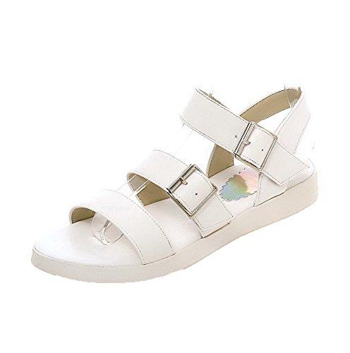 AalarDom Mujer Puntera Abierta Mini Tacón Sólido Hebilla Sandalias de vestir Blanco