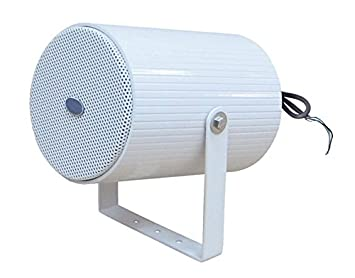 BST ap2320 Proyector de sonido: Amazon.es: Instrumentos musicales