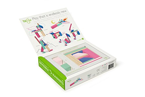 Review 14 Piece Tegu Magnetic