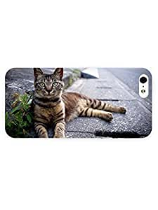 3d Full Wrap Case for iPhone 5/5s Animal Cute Cat66