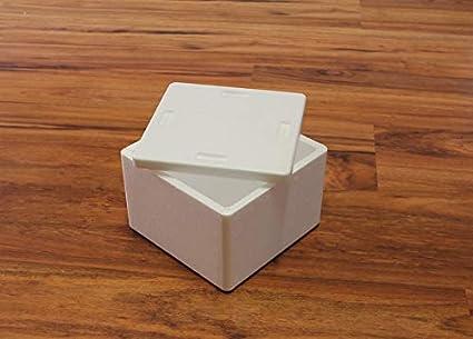 Integra Poliestireno Caja Blanco Aislante Caja térmica Caja Nevera ...