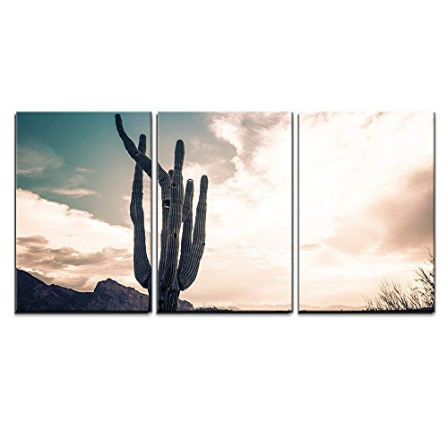 """wall26 - 3 Piece Canvas Wall Art - Iconic Saguaro Cactus and Camelback MTN Phoenix, AZ - Modern Home Decor Stretched and Framed Ready to Hang - 24""""x36""""x3 Panels"""