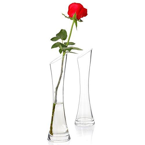 Greenaholics Glass Decorative Vase - 9.8