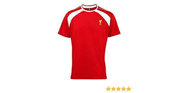 cdfc6ad14ac Amazon.com  Liverpool FC Official Adults Performance T-Shirt (M) (Red Gold)   Clothing