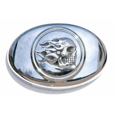 Chrome Dome Flaming Skull Air Cleaner Insert ()