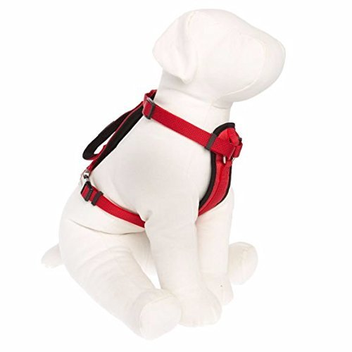 Kong Comfort Padded Harness Red Small