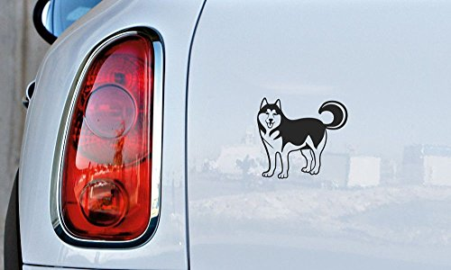 Dog Siberian Husky Version 1 Car Vinyl Sticker Decal Bumper Sticker for Auto Cars Trucks Windshield Custom Walls Windows Ipad Macbook Laptop Home and More Black Color