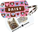 Paws on Hearts (Pink) Custom Pet ID Tag, My Pet Supplies