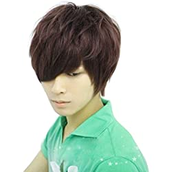 Rokou Fashion Style Male Man Boys Short Brown Color Straight Hair Wig Cosplay Costume Full Wigs