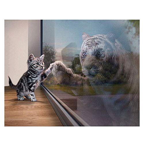 Euone  Diamond Painting, 5D Cat and Tiger Diamond Painting DIY Picture Full Drill Diamond Embroidery Crafts