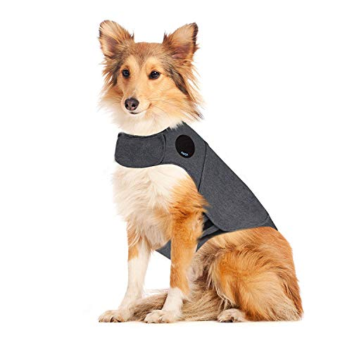 Thunder Dog Anxiety Jacket Anti-Anxiety Shirt Stress Relief Keep Calm Clothes, Heather Gray (L) (Best Thunder Jacket For Dogs)