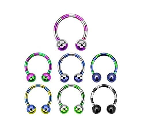 Inspiration Dezigns 16G Duo-Tone Purple Horseshoe Ring Circular Barbell Titanium Body - Barbell Circular Purple