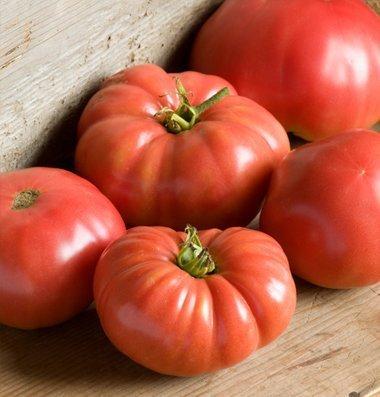 David's Garden Seeds Tomato Beefsteak German Johnson (Red) 50 Organic Heirloom Seeds