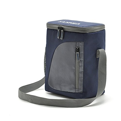 Amazon.com: 8.8L Insulated Lunch Bag Cooler Box Picnic Bag ...