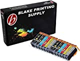 Blake Printing Supply Ink Cartridge for Inkjet Printer, 12-Pack (2 Small Black, 2 Cyan, 2 Gray, 2 Magenta, 2 Yellow, 2 Big Black)