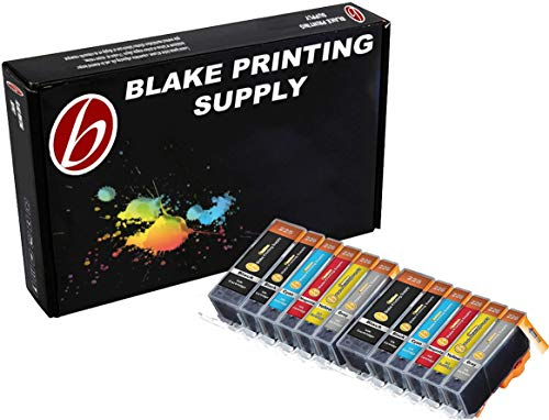 Toner 5300 Black - Blake Printing Supply Ink Cartridge for Inkjet Printer, 12-Pack (2 Small Black, 2 Cyan, 2 Gray, 2 Magenta, 2 Yellow, 2 Big Black)