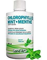 Liquid Chlorophyll Mint 500ml – Cold Extracted from Non-GMO Alfalfa - Detox - Alkaline - Natural Body Deodorant – Antioxidant - Made in Canada