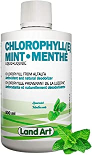 Liquid Chlorophyll Mint – Cold Extracted from Non-GMO Alfalfa - Detox - Alkaline - Natural Body Deodorant – An