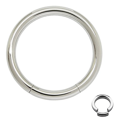 Seamless Fifth Cue 316L Surgical Steel Segment RingChoose Size (14G - 5/16