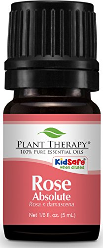 Plant Therapy Rose Absolute Essential Oil. 100% Pure, Undiluted, Therapeutic Grade. 5 mL (1/6 Ounce).