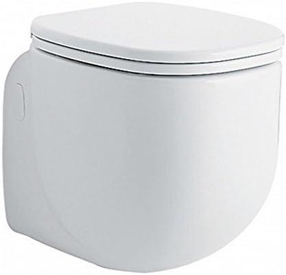 Sedile Pozzi Ginori Serie 500.Pozzi Ginori 500 Vaso Sospeso Con Coprivaso 41351 Sanitari Bagno Ceramica Amazon It Casa E Cucina