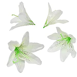 HZOnline Artificial Silk Flower Head Lilies, Tiger Lily Heads Decor Bridal Bouquet Wreath Headwear Clip DIY Accessories Wedding Home Party Garden Decoration (20pcs White) 10