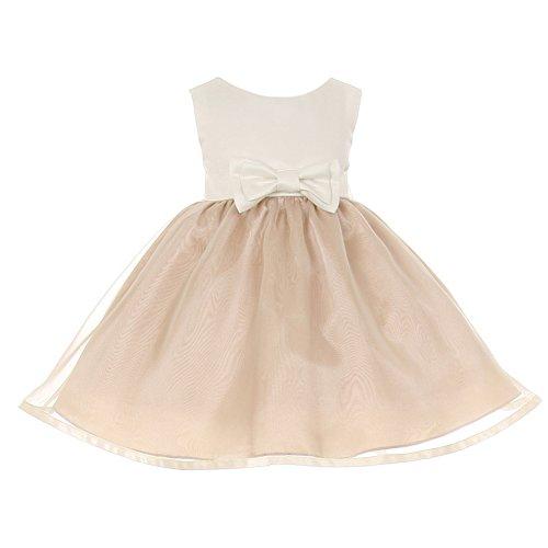 Satin Cinderella (Cinderella Couture Baby Girls Champagne Ivory Satin Organza Headband Dress 24M)