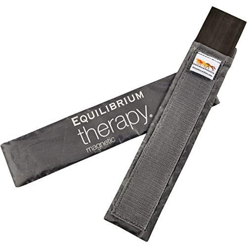 - Equilibrium Therapy Spare Magnets For Magnetic Back Pad or Magnetic Chaps (Large)