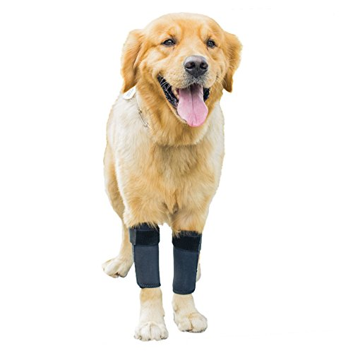 GNIKS Dog Front Leg Wrap Protects Brace Pets Joint Hock Paw Compression Wraps For Protects Wounds Brace Heals and Prevents Injuries and Sprains (S-M)