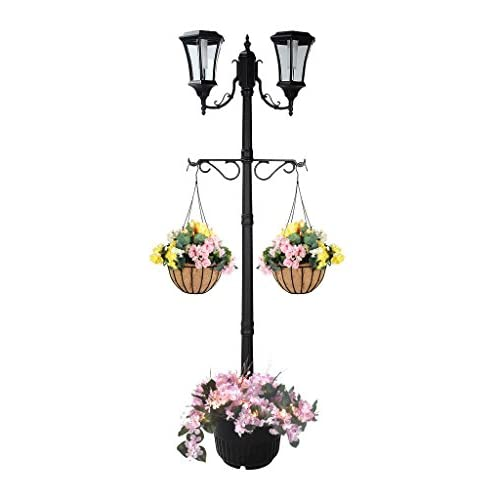 10 Best Lamp Post Planter