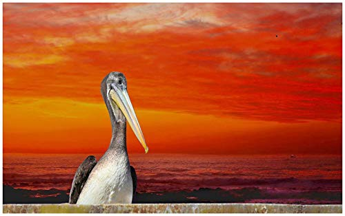 Adult Puzzle Jigsaw 1000 Pieces Red Sunset Seashore Waterfowl Landscape Made of Wood Board Will Not Be Deformed