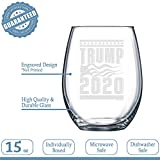 NeeNoNex Trump 2020 with American Flag Stemless