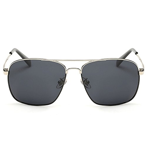 IPOLAR GSG800030C2 New Style Resin Polarized Lens Retro Metal Frames - The Hut Student Discount