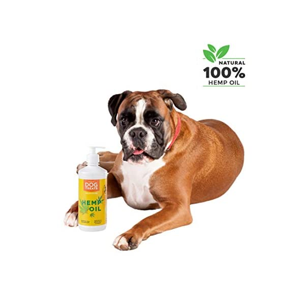 Hemp Oil 100% Extra Virgin Cold Pressed Natural Joint Supplement for Dogs, Cats and Horses, 500 ml