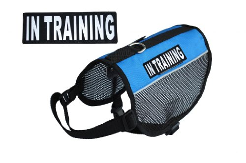 Training Service Purchase reflective TRAINING