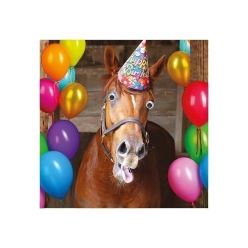 Horse Birthday Card Amazon