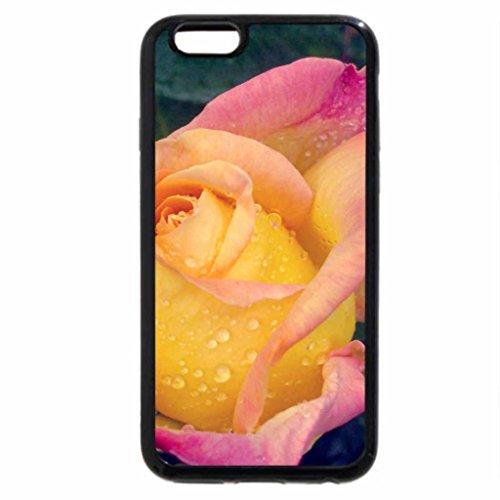 iPhone 6S / iPhone 6 Case (Black) Golden Ratio