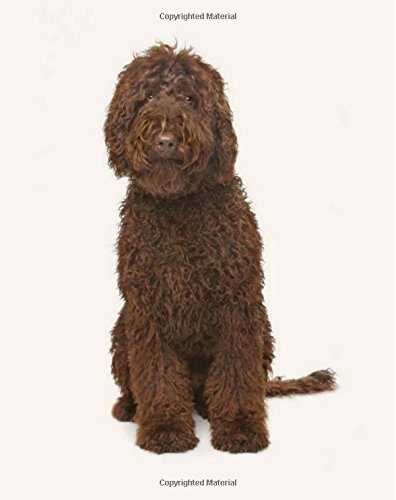 Download Labradoodle: Artified Pets Dog Journal/Notebook/Diary ebook