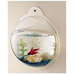 Wall Mount Hanging Beta Fish Bubble Aquarium Bowl Tank, New