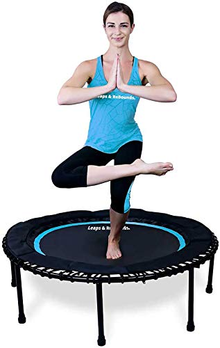 Leaps & ReBounds: Rebounder -Fitness Trampoline - Full-Size Protective Mat - Minimal Joint Impact -...