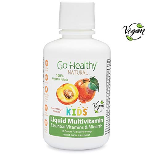 Go Healthy Natural Kids Vegan Liquid Multivitamin with Organic Folate - 32 Servings
