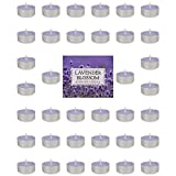 DII Z02076 Highly Scented Tealight Candle Home Décor, Wedding, Party, Holiday, Spa Aromatherapy, 1.5x0.63, Lavender Blossom